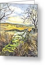 Gisburn Forest Lancashire Uk Greeting Card by Carol Wisniewski