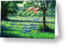 Glen Rose Bluebonnets Greeting Card by Vickie Fears