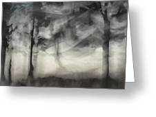 Glimpse Of Coastal Pines Greeting Card by Carol Leigh