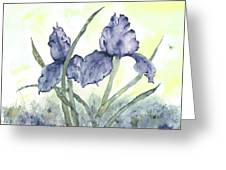 Gloriously Purple II Greeting Card by Shirley Mercer
