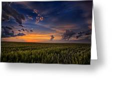 God's Country Greeting Card by Thomas Zimmerman