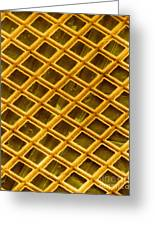 Gold Electron Micrograph Grid Greeting Card by David M. Phillips