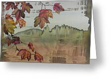 Gold Ridge Maple Greeting Card by Carolyn Doe
