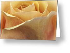 Golden Delicious Greeting Card by Darlene Kwiatkowski