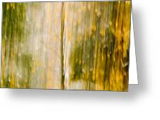 Golden Falls  Greeting Card by Bill Gallagher