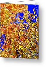 Golden Greeting Card by Kathleen Struckle