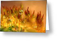 Golden Palette Greeting Card by Annie  Snel