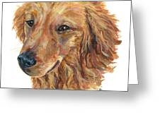 Golden Retriever Greeting Card by Barb Capeletti