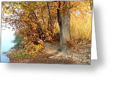 Golden Riverbank Greeting Card by Carol Groenen