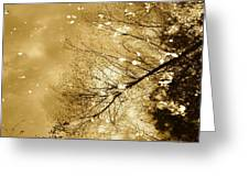 Golden Tones Greeting Card by Corinne Rhode