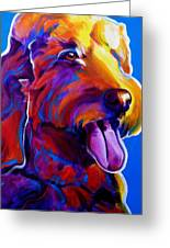 Goldendoodle - Dawny Greeting Card by Alicia VanNoy Call