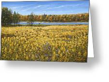 Goldenrod Greeting Card by Doug Kreuger