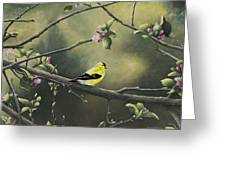Goldfinch Greeting Card by Mary Ann King