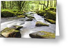 Golitha Falls Greeting Card by Helen Hotson