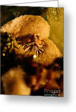 Good St. Nick Greeting Card by Lois Bryan