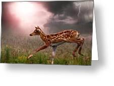 Goodbye Bambi Greeting Card by Bill Stephens