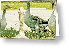 Goose Chat Greeting Card by Artist and Photographer Laura Wrede