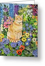 Gordon S Cat Greeting Card by Hilary Jones