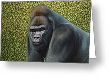 Gorilla With A Hedge Greeting Card by James W Johnson