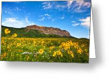 Gothic Meadow Greeting Card by Darren  White