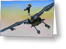 Graceful Landing Greeting Card by Phyllis Beiser