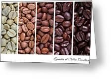 Grades Of Coffee Roasting Greeting Card by Jane Rix
