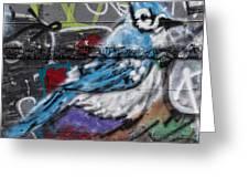 Graffiti Bluejay Greeting Card by Carol Leigh