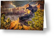 Grand Canyon National Park Greeting Card by Bob and Nadine Johnston