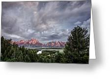 Grand Treeton Greeting Card by Jon Glaser