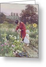 Grandads Garden Greeting Card by Rose Maynard Barton
