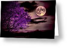 Grape Leaves Greeting Card by Robert McCubbin
