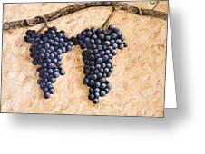 Grape Vine Greeting Card by Darice Machel McGuire