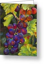 Grapevine Greeting Card by Chris Brandley