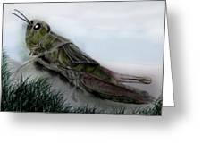 Grasshopper Resting Greeting Card by Cynthia Adams