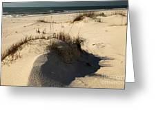 Grassy Dunes Greeting Card by Adam Jewell