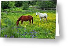 Grazing Amongst The Wildflowers Greeting Card by Karol  Livote