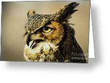 Great Horned Owl Greeting Card by Julieanna D