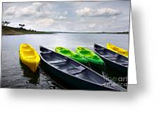 Green And Yellow Kayaks Greeting Card by Carlos Caetano