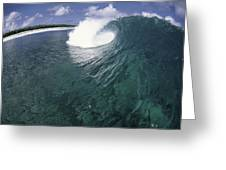 Green Curl Greeting Card by Sean Davey