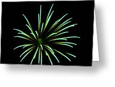 Green Lights Up The Sky Greeting Card by Cynthia N Couch