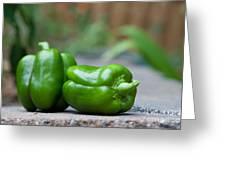 Green Peppers Greeting Card by Kay Pickens