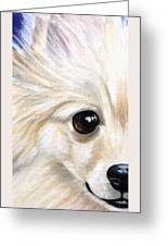 Grinning Pom Greeting Card by Debbie Finley
