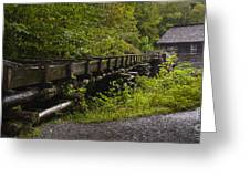 Grist Mill Greeting Card by Cindy Tiefenbrunn