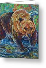 Grizzly Creek Greeting Card by Jenn Cunningham