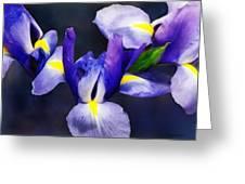 Group Of Japanese Irises Greeting Card by Susan Savad