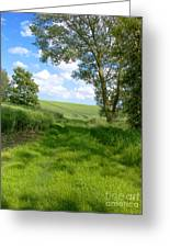 Growing Green Greeting Card by Ann Horn
