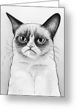 Grumpy Cat Portrait Greeting Card by Olga Shvartsur