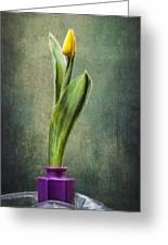 Grunge Yellow Tulip Greeting Card by Erik Brede