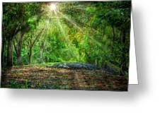 Guardian Of The Forest Greeting Card by Mark Andrew Thomas