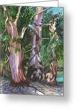 Gum Trees In Oz Greeting Card by Carol Wisniewski